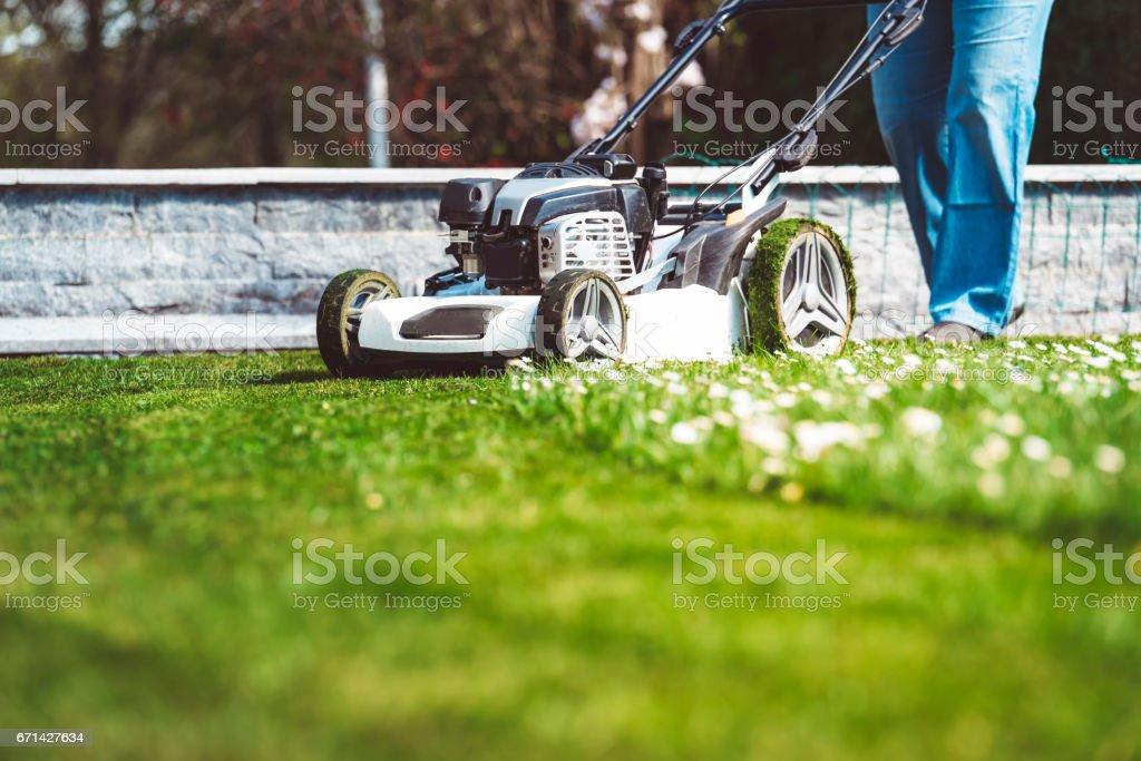 Rasenmäher Mähen grünen Rasen – Foto