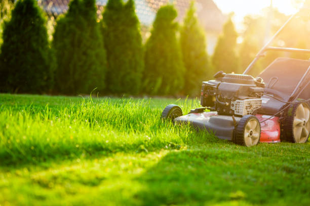 Lawn mower on green grass stock photo