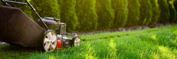 Lawn mower Lawn mower on green grass mowing stock pictures, royalty-free photos & images