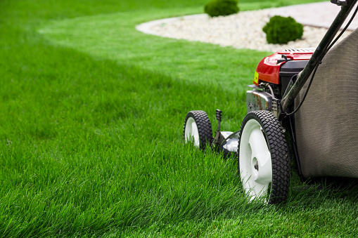 Lawn Mower Stock Photo - Download Image Now