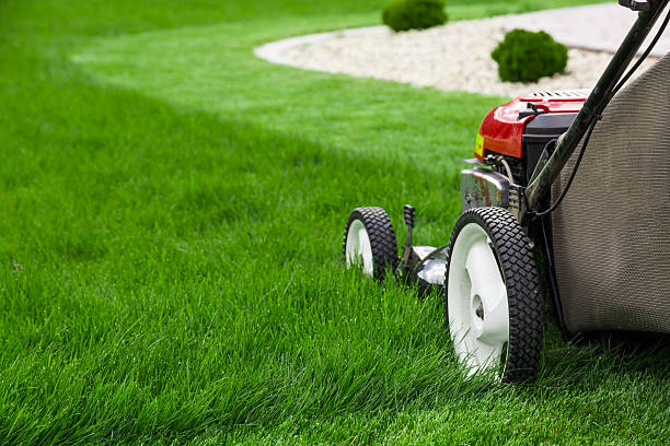 Lawn mower Photograph of lawn mower on the green grass. Mower is located on the right side of the photograph with view on grass field.  lawn stock pictures, royalty-free photos & images
