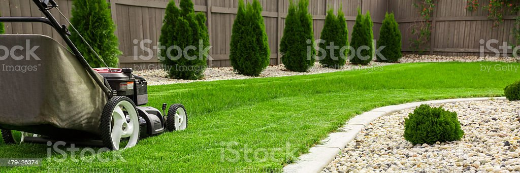 Lawn mower stock photo