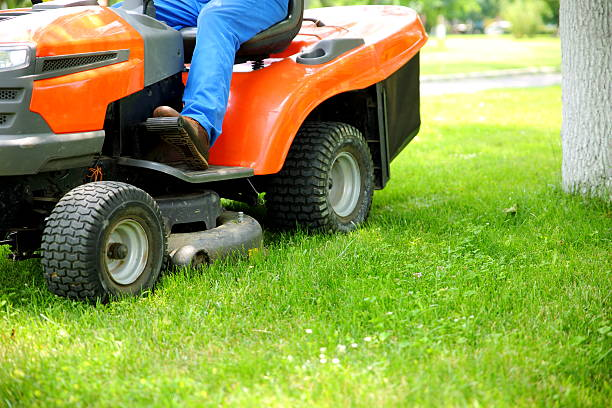 lawn mower - riding lawn mower stock photos and pictures