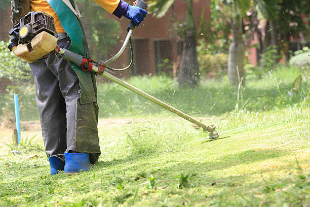 lawn mower worker cutting grass in green field stock photo