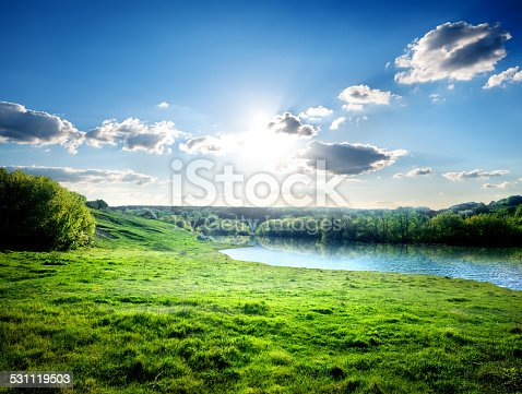 Green lawn near river in the forest