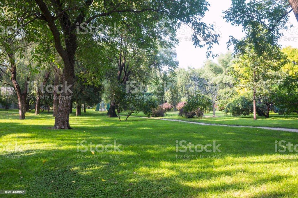 lawn – Foto