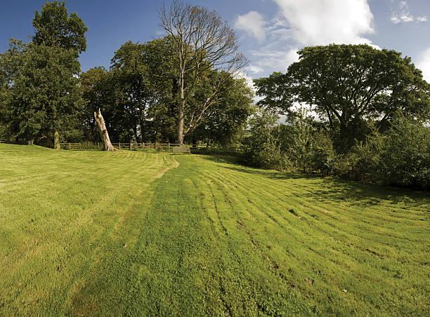 lawn - rustikaler hinterhof stock-fotos und bilder