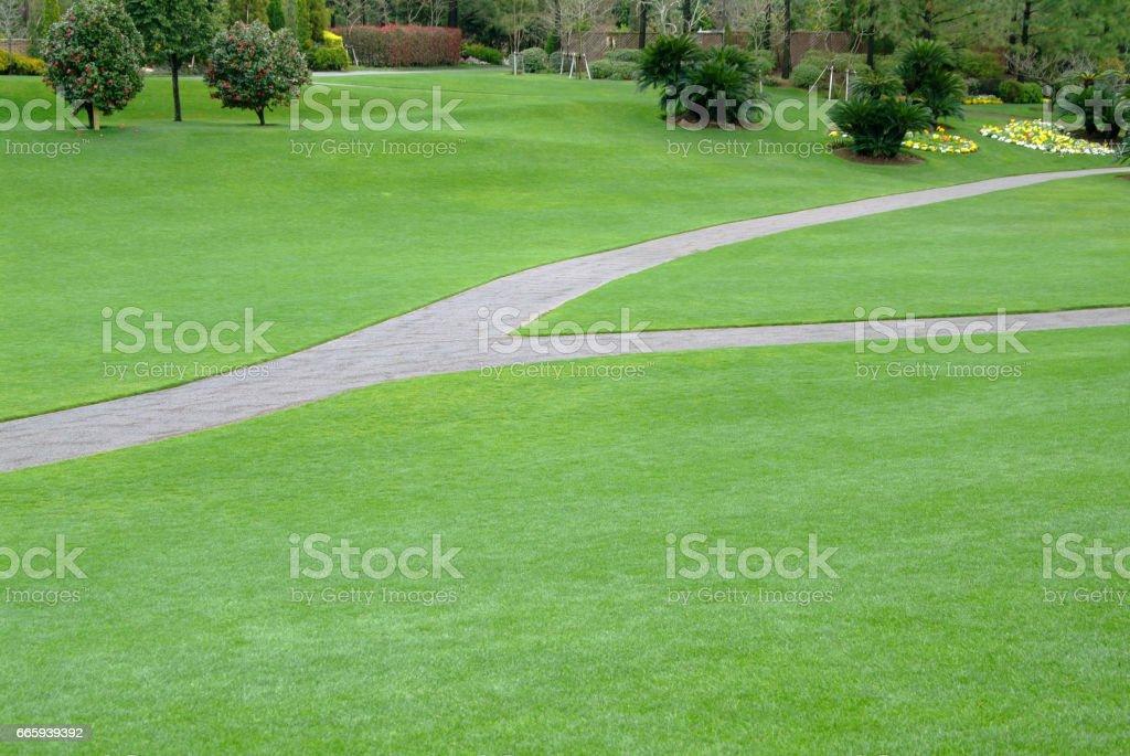 Lawn Plaza foto stock royalty-free