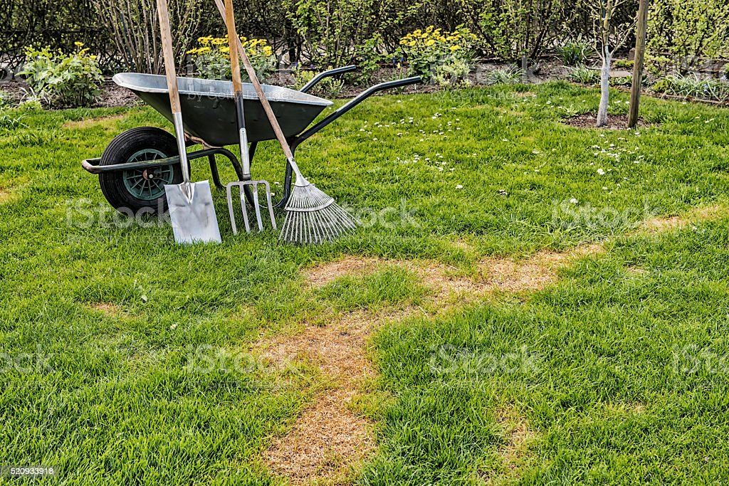Lawn - Repair - Bad Condition stock photo