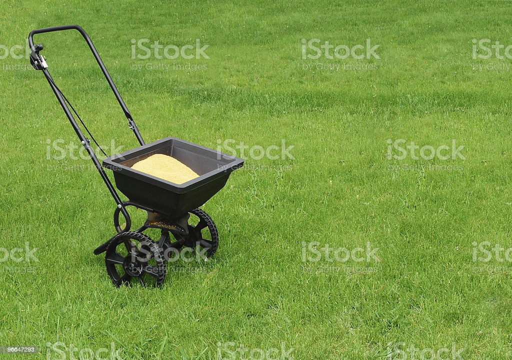 Lawn seed spreader in middle of bright green lawn stock photo