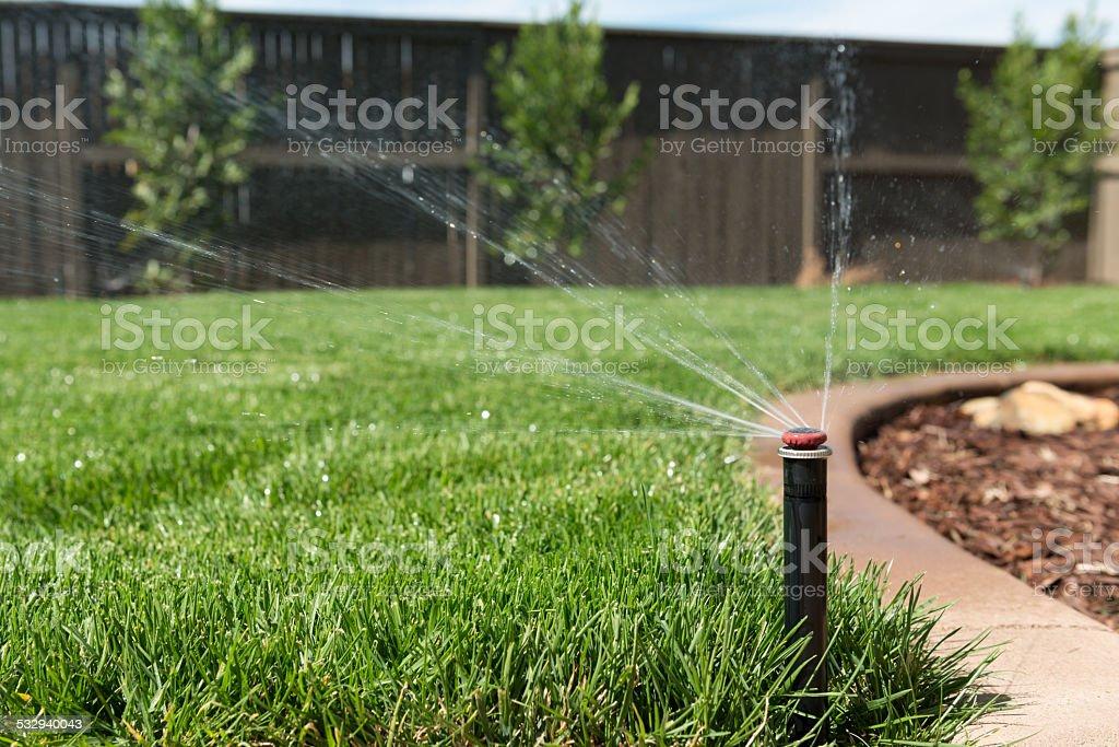 Lawn Sprinkler Head stock photo
