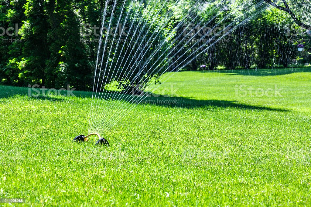 Lawn Sprinkler Oscillation Motion Water Spray stock photo
