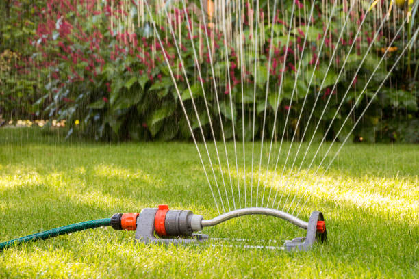 lawn sprinkler - watering stock pictures, royalty-free photos & images