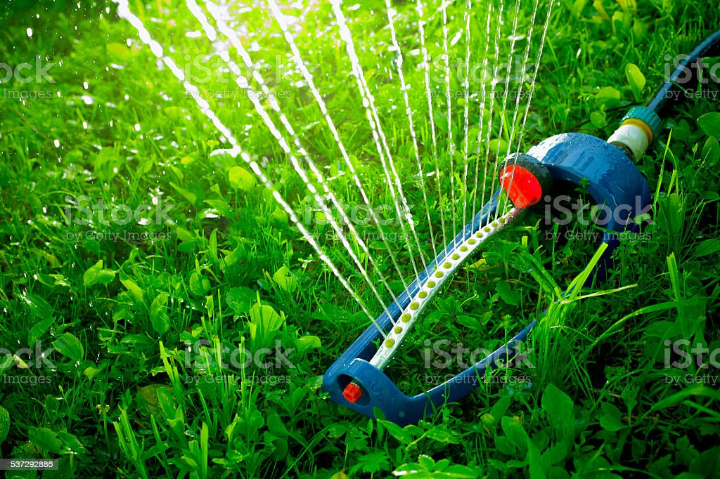 Prato Di Irrigazione La Sterilizzazione Acqua Sopra Erba