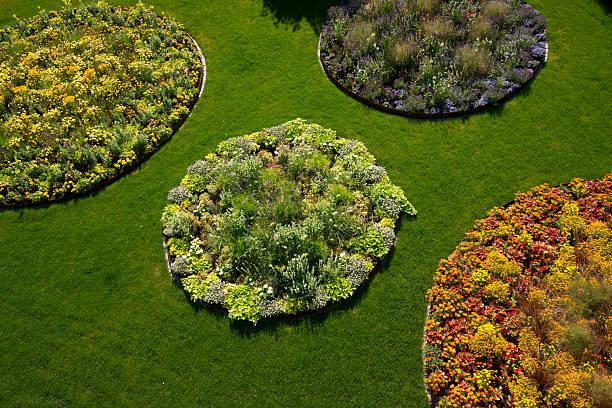 Rasen mit runder blossom Bereichen – Foto