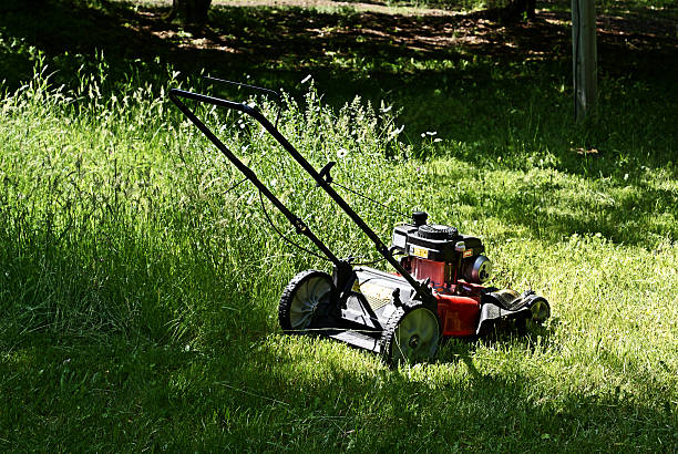 Lawnmower in the Grass stock photo