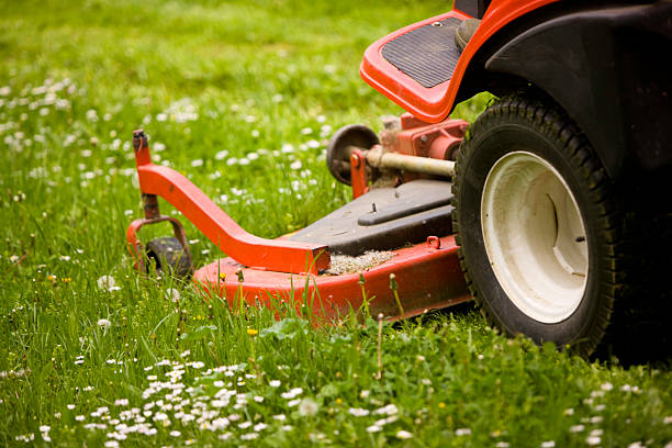 lawnmower - riding lawn mower stock photos and pictures