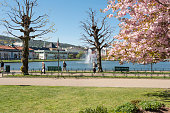 Bergen, Norway - May 2, 2014: Lake Lille Lungegardsvannet and surrounding park and city square (Festplassen) in the center of the City of Bergen on the west coast of Norway on a sunny day in spring. The lawns are green and the cherry trees are blooming (sakura) in the parks surrounding the lake. Some people are seen strolling on the walkway of the park.