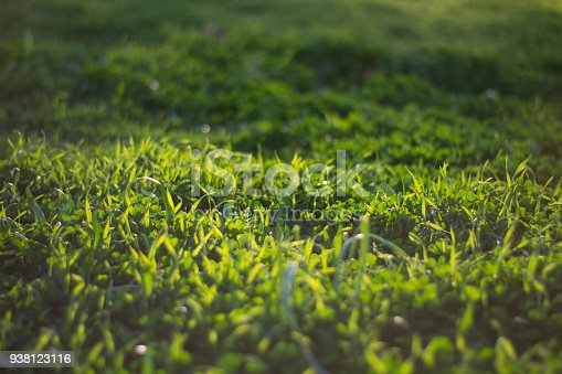 istock Lawns background concept 938123116