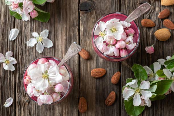 pudding de chiches en couches avec yogourt, bleuets et fleurs de pommier - pudding au lait roses photos et images de collection