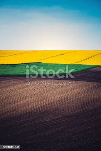 Plowed field, green pasture and oilseed rape field with tractor traces. Four layers of colours: brown, green, yellow and blue.