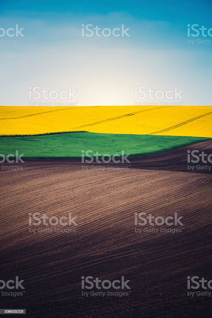 Layers Of Colorful Field stock photo