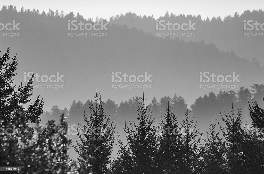 Layers of Fog over Hills royalty-free stock photo