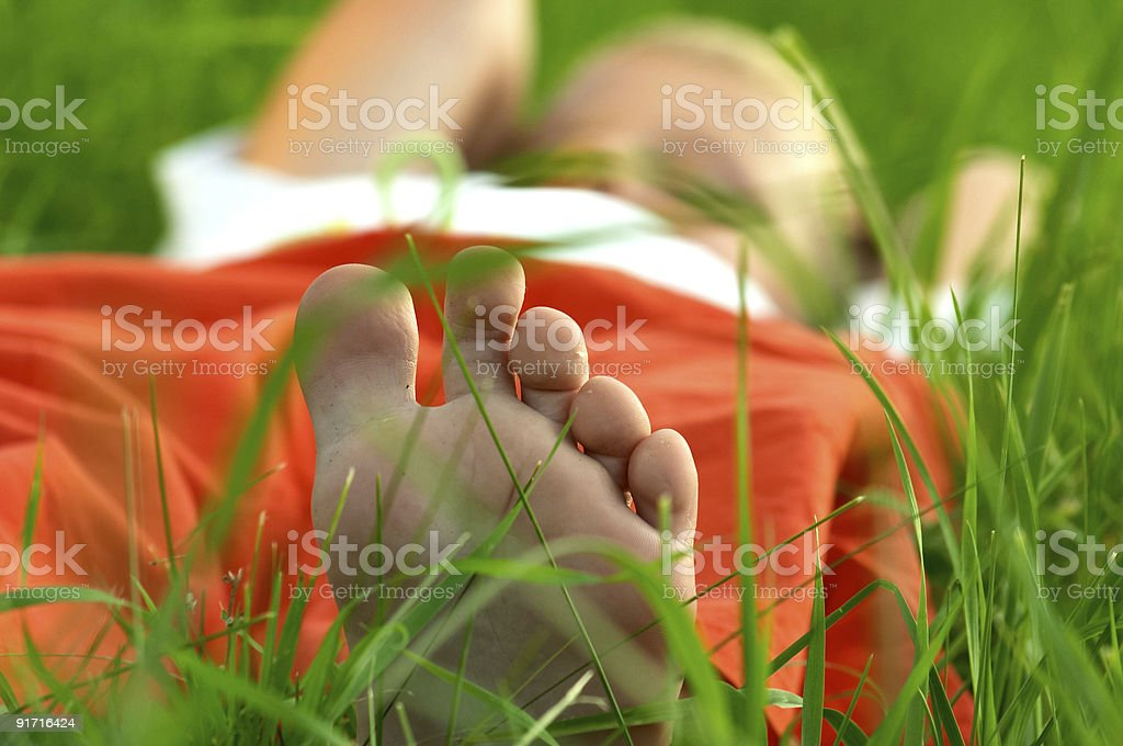Laying in grass stock photo