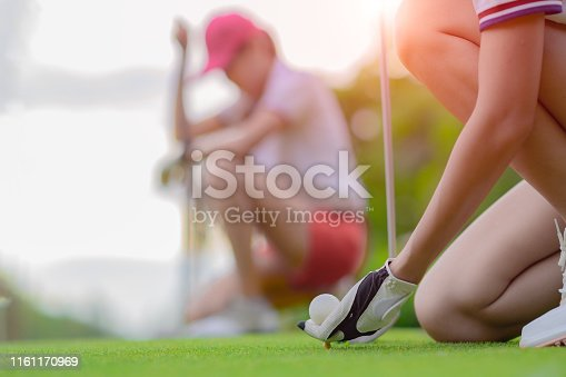 istock Laying in hit 1161170969
