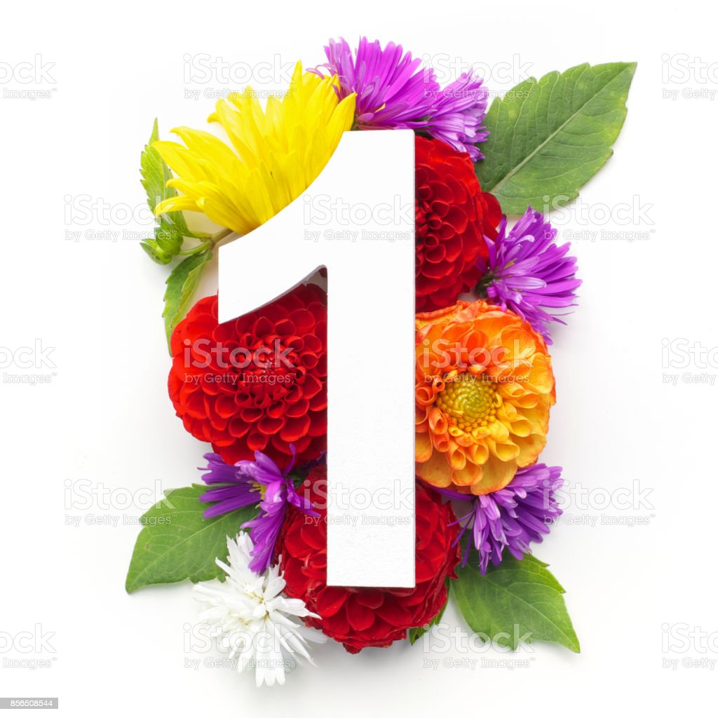 Layout With Colorful Flowers Leaves And Number One Flat Lay Top View ...
