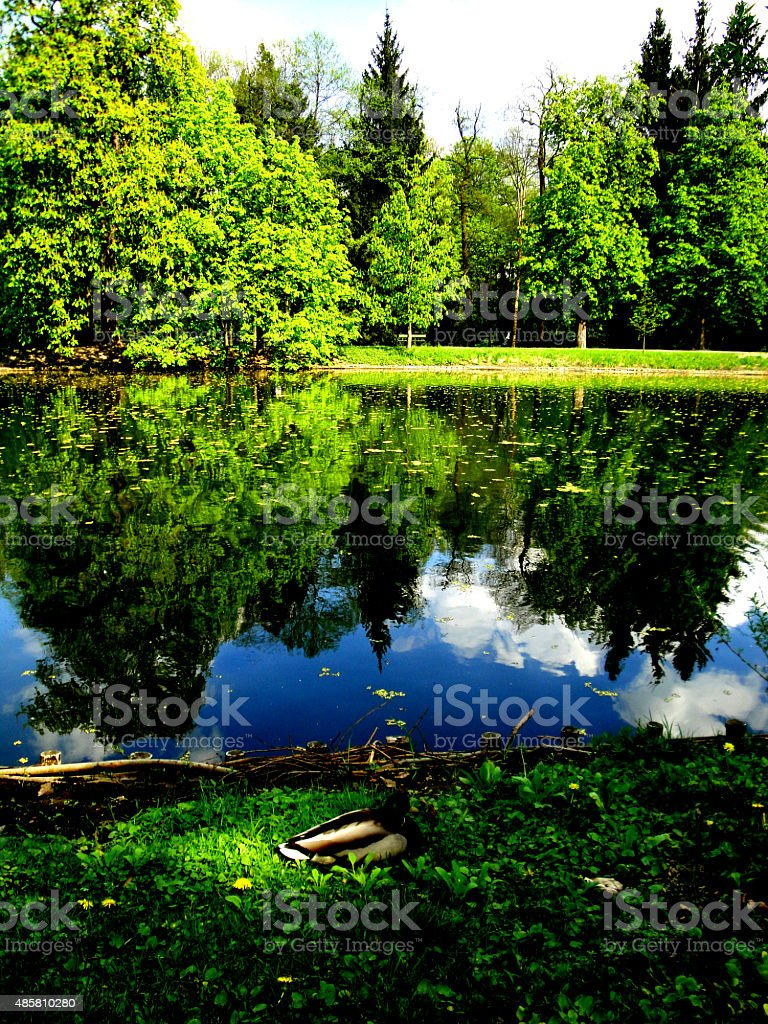 'Lazienki' Park in Warsaw stock photo