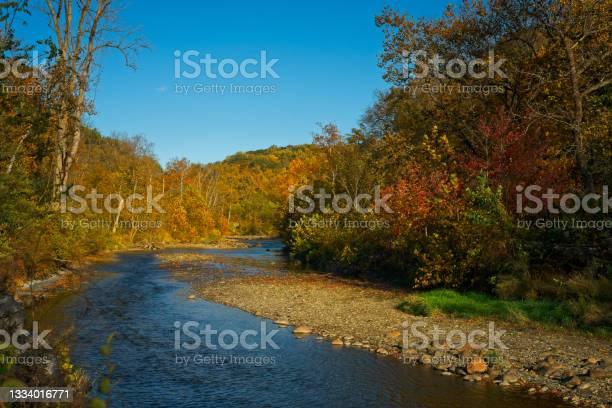 Photo of Lazy autum creek