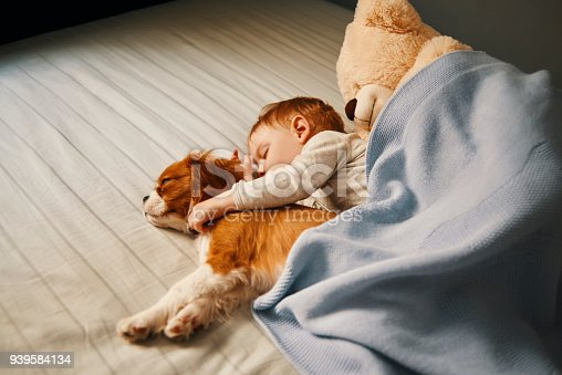 942206906 istock photo lazy mornings at home 939584134
