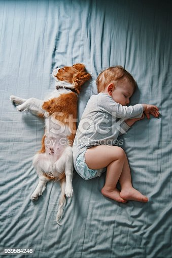 942206906 istock photo lazy mornings at home 939584246