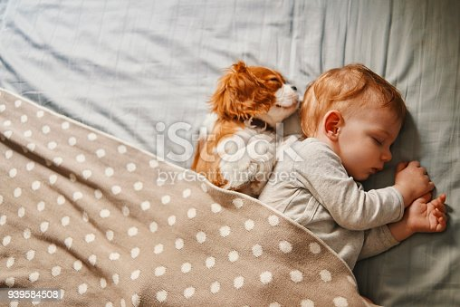 942206906 istock photo lazy mornings at home 939584508