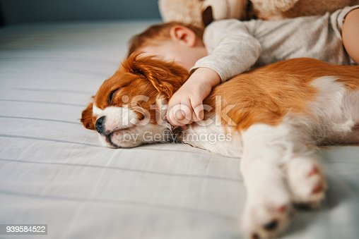 942206906 istock photo lazy mornings at home 939584522