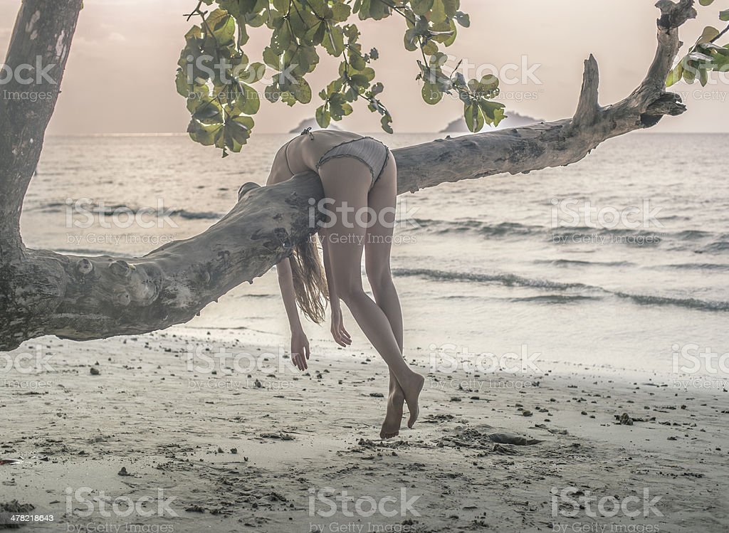 lazy girl at the tree Adult Stock Photo