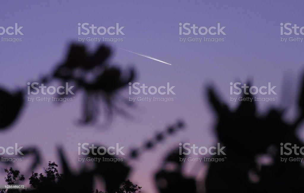 Le bougainvillier et l'avion stock photo