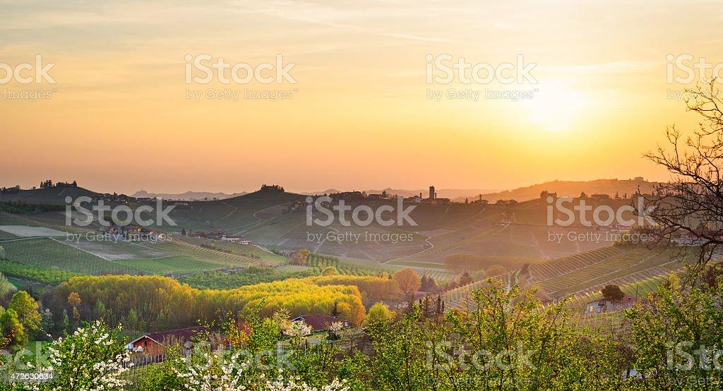Le Langhe, Barbaresco (Piemonte, Italy) stock photo