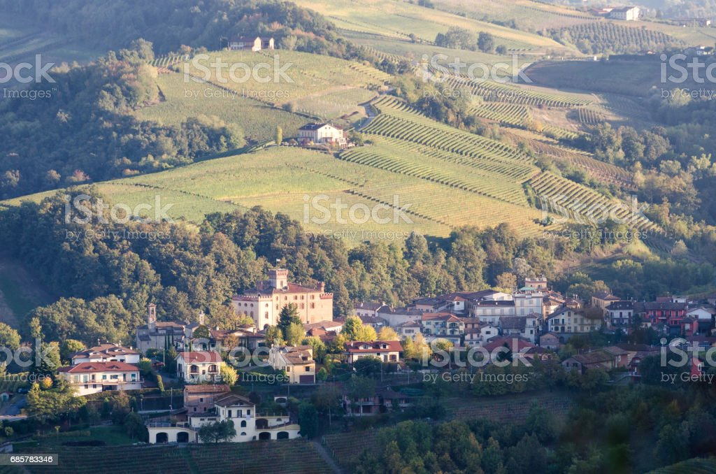 Le Langhe Barolo and landscape royalty-free stock photo
