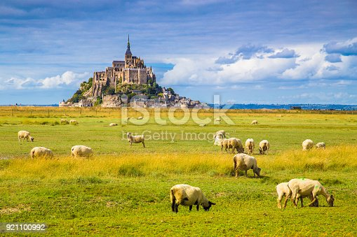 istock Le Mont Saint-Michel with sheep grazing on green meadows in summer, Normandy, France 921100992