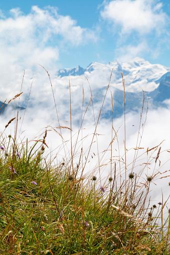 istock Le Mont-Blanc depuis le col de Joux Plane 1019996240