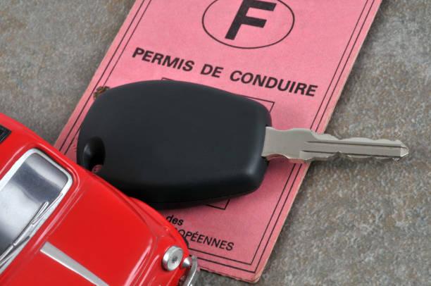 le permis de conduire - führerschein stock-fotos und bilder