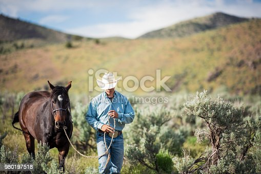 A young man leading his horse through a rural landscape in Utah, USA.