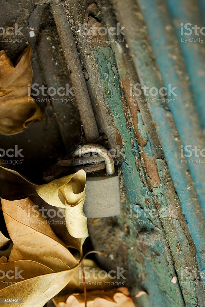 leaf and padlock royalty-free stock photo