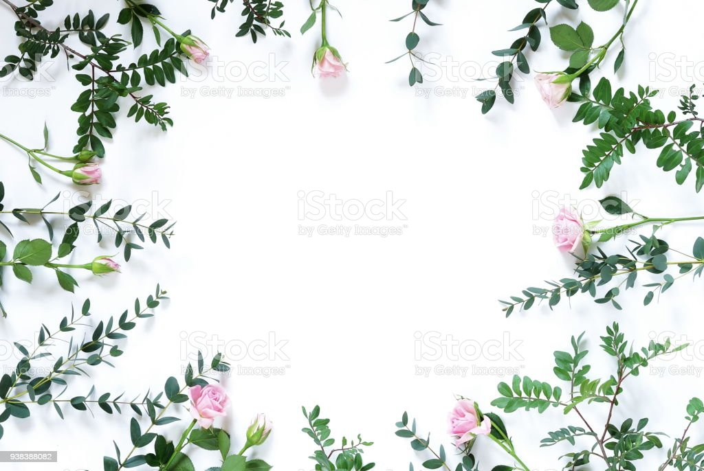 Leaf And Pink Roses Pattern Frame Green Tropical Leaves On White