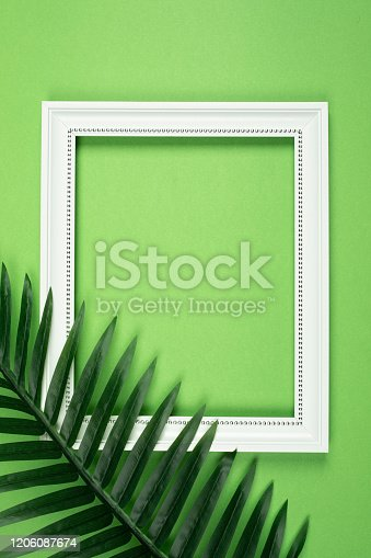 Leaf and white photo frame on green background