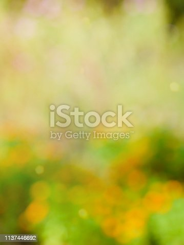 istock Leaf bokeh in the forest, missed focus 1137446692