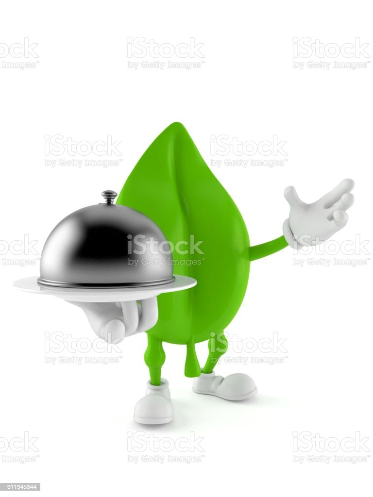 Leaf character holding catering dome stock photo