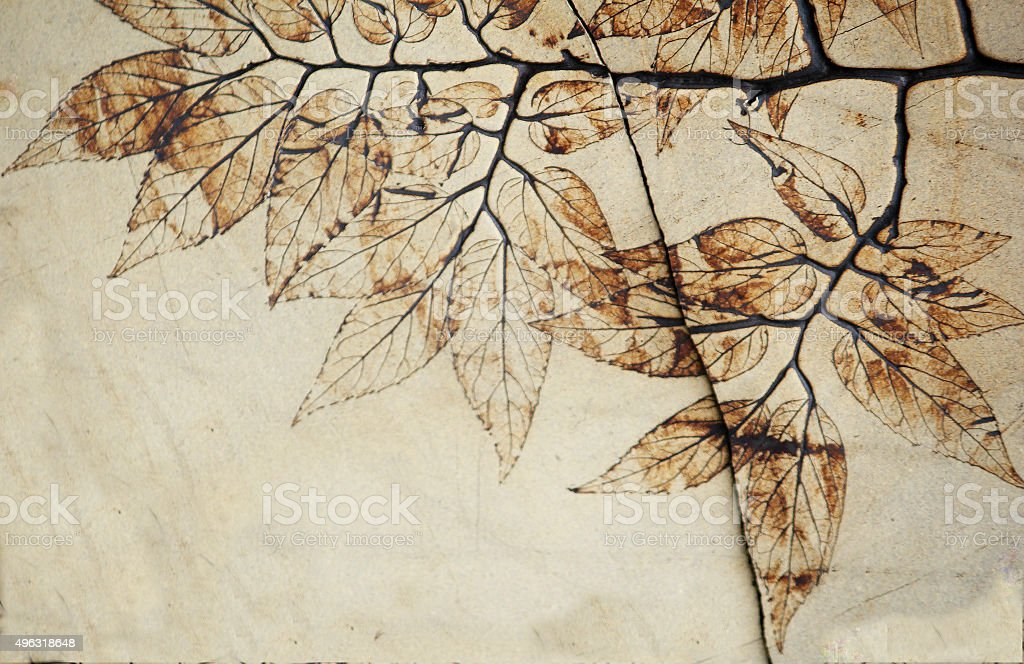 Leaf Fossil stock photo